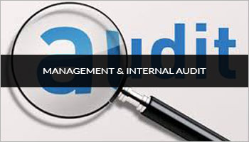 Management and Internal Audit